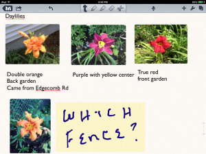 Images, Typed Text, Hand Written Notes