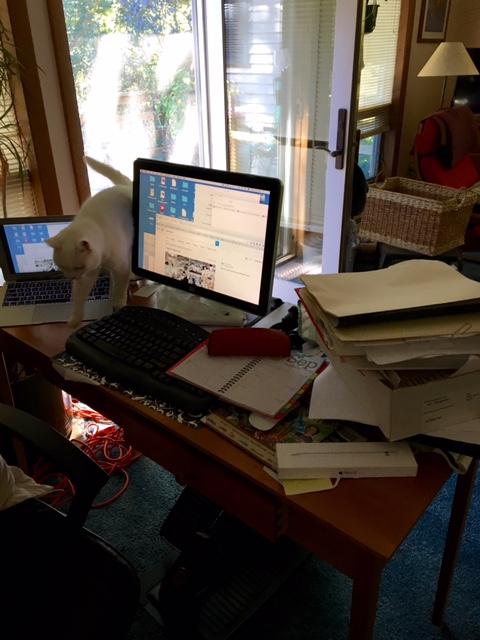 messy desk copy