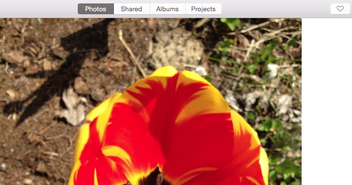 Sharing Photos Using New Photos App on Macs