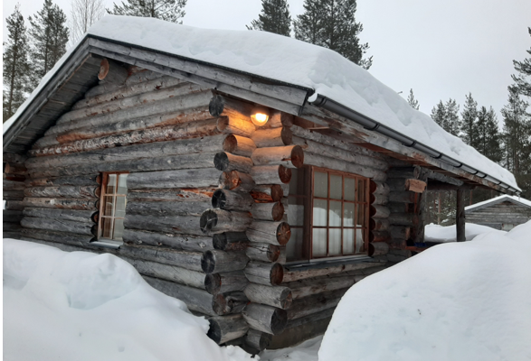Join Us: Cabin Fever Reliever!